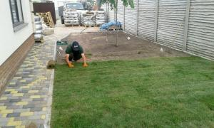 Garden maintenance, gardening, gardening services, planting and pruning q