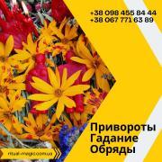 Мощные любовные привороты. Помощь в исцеление болезней Харьков